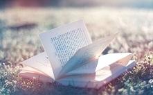 Jest to mój blog. Na tym blogu będą umieszczane, różnego rodzaju opowiadania.