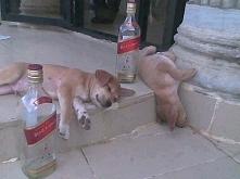 Tymczasem po długim weekendzie...