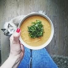 Zupa krem z soczewicy i war...