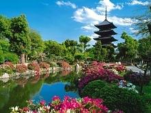 Piękna Japonia *.*