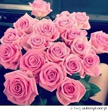 Cudne róże <3 piękne *.*