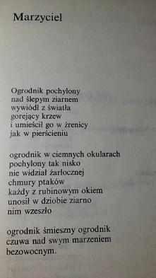 Tadeusz Różewicz. Marzyciel.