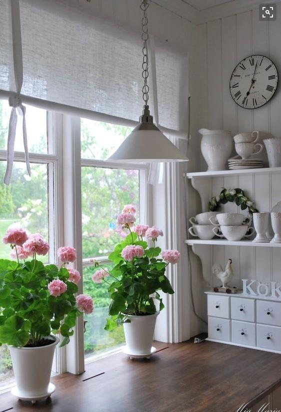 Kwiaty W Kuchni Na Piękna Kuchnia I Jadalnia Zszywka Pl