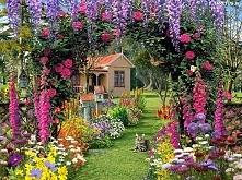 Kot siedzi w przepięknym ogrodzie :* zamurowało mnie =^.^=