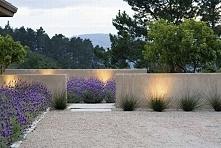 Zieleń przed domem w nowoczesnym stylu - zobacz jak wygląda stylowy ogródek przed wejściem do domu - kwiaty i kępy trawy na tle betonowego murku - zainspiruj się! Zapraszam do k...