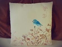 niebieski ptak, poduszka de...