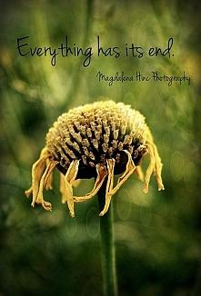 Wszystko się kiedyś kończy...
