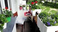 Metamorfoza wąskiego balkonu! sprawdź jak to łatwo zrobić. Po więcej kliknij w zdjęcie!
