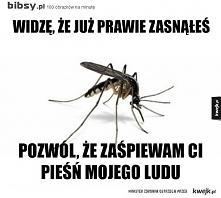 Komary nadciągają ...