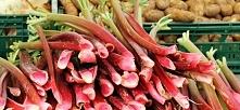 Warzywa sezonowe: Rabarbar