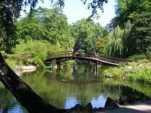 Ogród botaniczny Sceneria jak z idealnej randki ;)