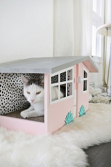 domek dla kota <3