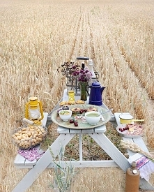 po prostu piknik