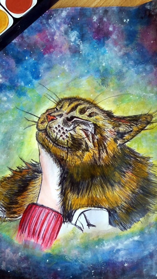 Koteł Kabii Marzyciel