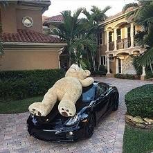 Bierzecie auto czy misia?