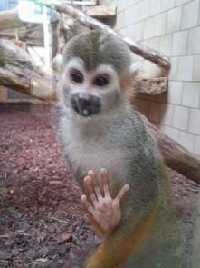<3 zoo Opole :)