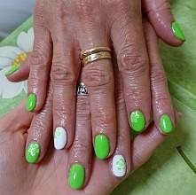 Hybryda estetiq 213 neonowa zieleń :)