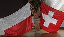 co myślicie o arbitrze na meczu Polska-Szwajcaria?