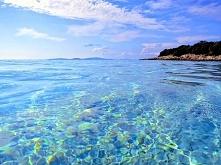 Otok Silba (Chorwacja) świetne miejsce z lazurową wodą.