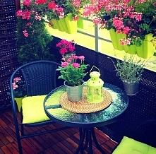Kwiatowa oaza