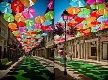 Agueda's colorful Umbrellas, Portugalia