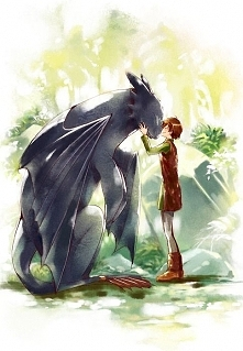 Hiccup & Night Fury