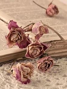 Różowe książki