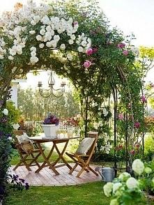 różany taras w ogrodzie