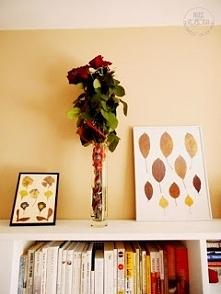 Suszone liście i kwiaty + książki