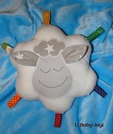 Metkowiec owieczka