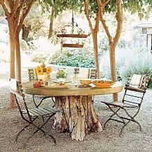 stół pod drzewem