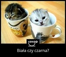 Urocze, prawda? Kawowe memy i inspiracje na portalu kawa.pl!