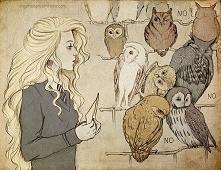 Luna i sowy # lawina