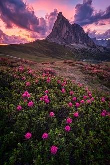 La Gusella, Italy