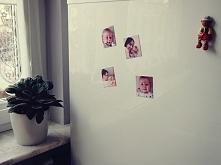 Jak zrobić magnesy na lodówkę, które będą idealnym prezentem dla najbliższych...