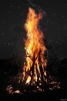 FIREE♥