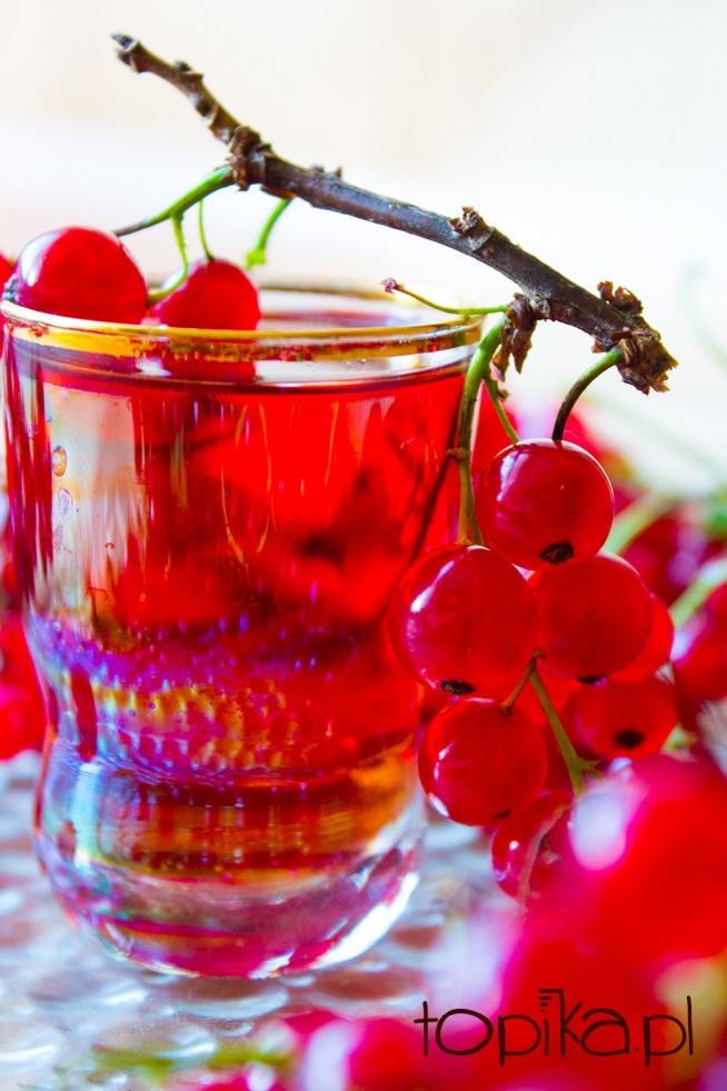 Nalewka z czerwonej porzeczki  Składniki:  1 l soku z czerwonej porzeczki,  2 l wódki 45% ( otrzymanej ze spirytusu ),  1,5 g cynamonu,  1,5 g goździków,  cukier.   Wycisnąć 1 l soku ze świeżo zebranych, czerwonych porzeczek, przecedzić przez sito aby sok pozbawić ziaren. Sok wlać do słoja, dodać 2 l wódki 45%, wsypać po 1,5 g cynamonu i goździków, dobrze wymieszać.  Słój zamknąć, postawić w ciepłym miejscu na 2 miesiące ( czyli w temeraturze pokojowej ).  Po tym czasie nalewkę zlać, filtrując przez bibułę filtracyjną i dosłodzić według gustu.  Rozlać do butelek, postawić w ciemnym i chłodnym miejscu na 4 miesiące aby dojrzała.
