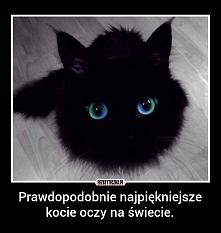 ach te oczy