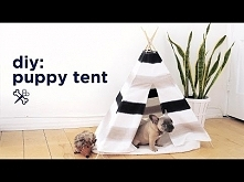 DIY PUPPY / PET TENT | THE ...