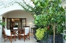 Jak urządzić ogród zimowy? Gdzie w domu zaprojektować ogród zimowy? Jak wyglą...