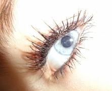 *,* my eye