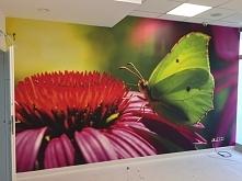 Kolorowa fototapeta w przestrzeni biurowej