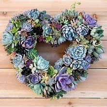 wianek ozdobny z kaktusów