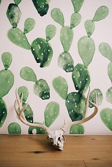 cacti skull