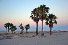 Paraíso (Valencia, Hiszpania)