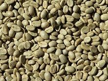 Jak parzyć zieloną kawę? Ja...