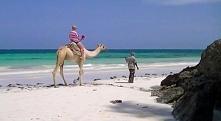 Kenia, Diani Beach, okolice Mombasy
