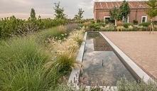 ••Garden in Finca Las Tenad...