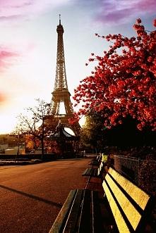 Paris ♥♥