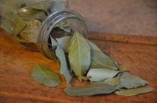 lisc laurowy..niezwykle zastosowania..wybiela zeby,wzmacnia wlosy,relaksuje a nawet przeciw bolowy